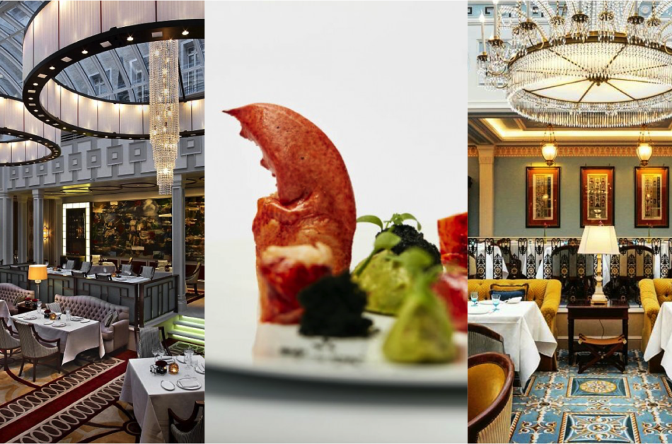 London's Finest Luxury Dining Experiences