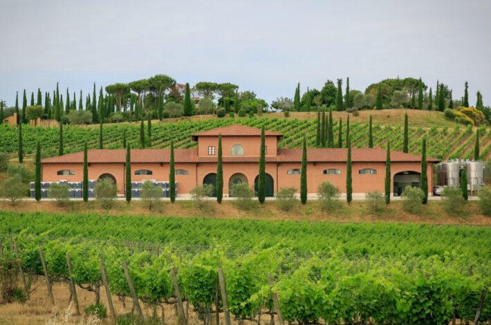 Wine estate1