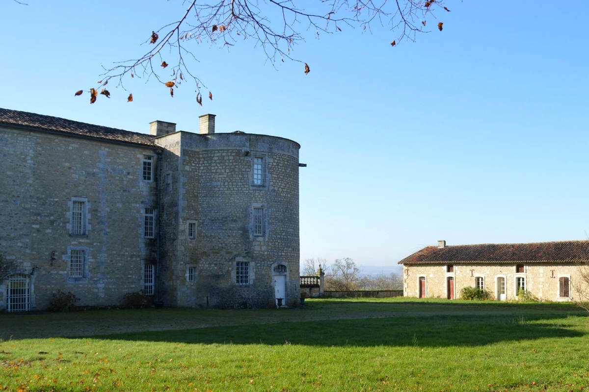 Castle-style homes: Castle in Cognac, France (approx. US$1,271,114).